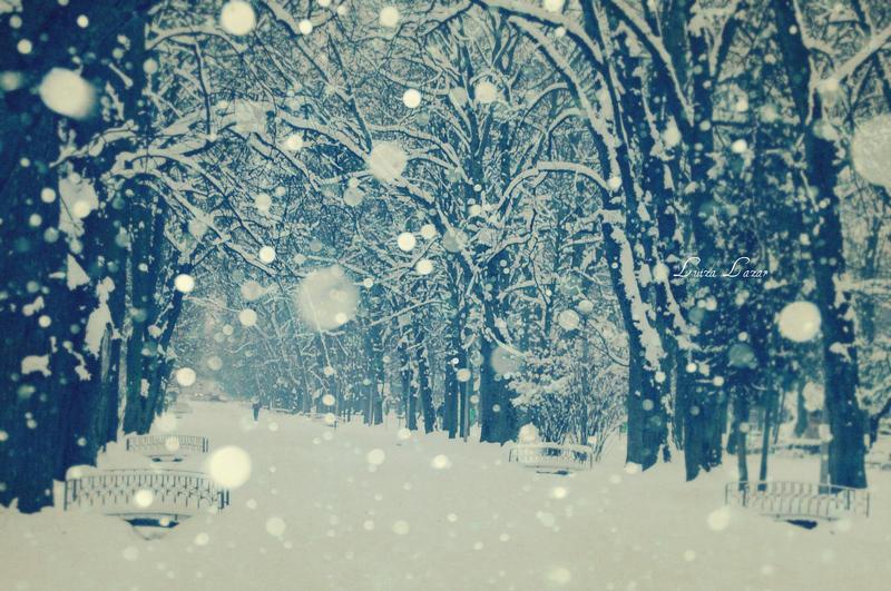 Emotional winter by LuizaLazar