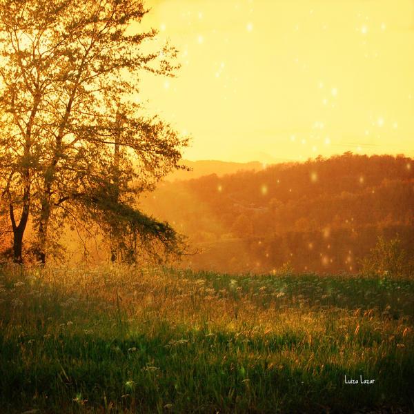 fireflies by LuizaLazar