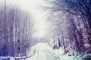 White Winter Hymnal