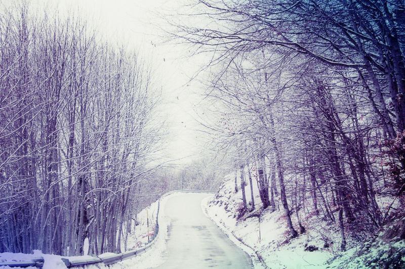 white winter hymnal by luizalazar on deviantart. Black Bedroom Furniture Sets. Home Design Ideas