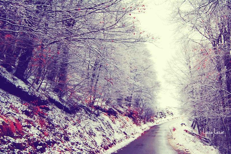 When it's winter in my heart by LuizaLazar