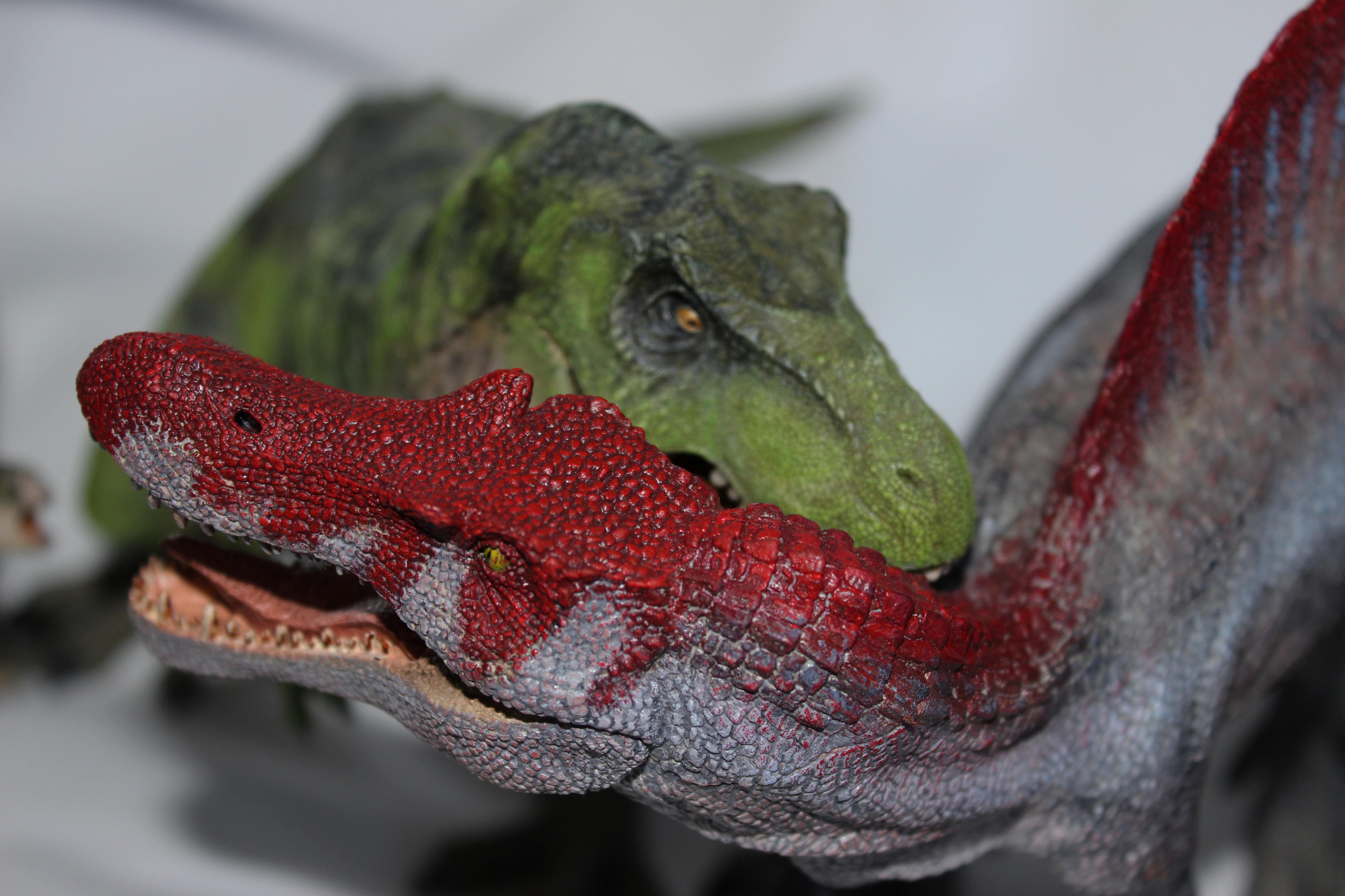 T-Rex vs Spino by ak1508 on DeviantArt