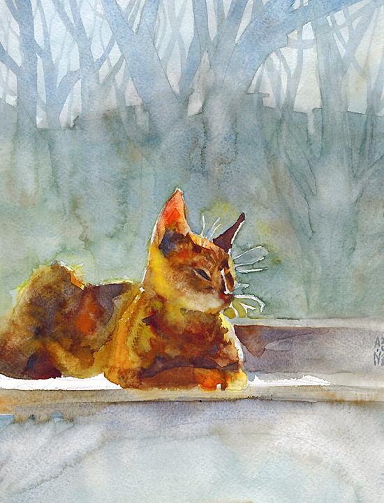 Cat by ayjaja