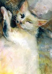 Family Cat by ayjaja