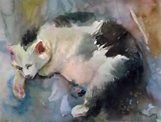 Big White Cat by ayjaja