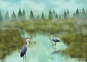 Herons by SpicyBrownieMix