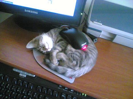 furry mousepad