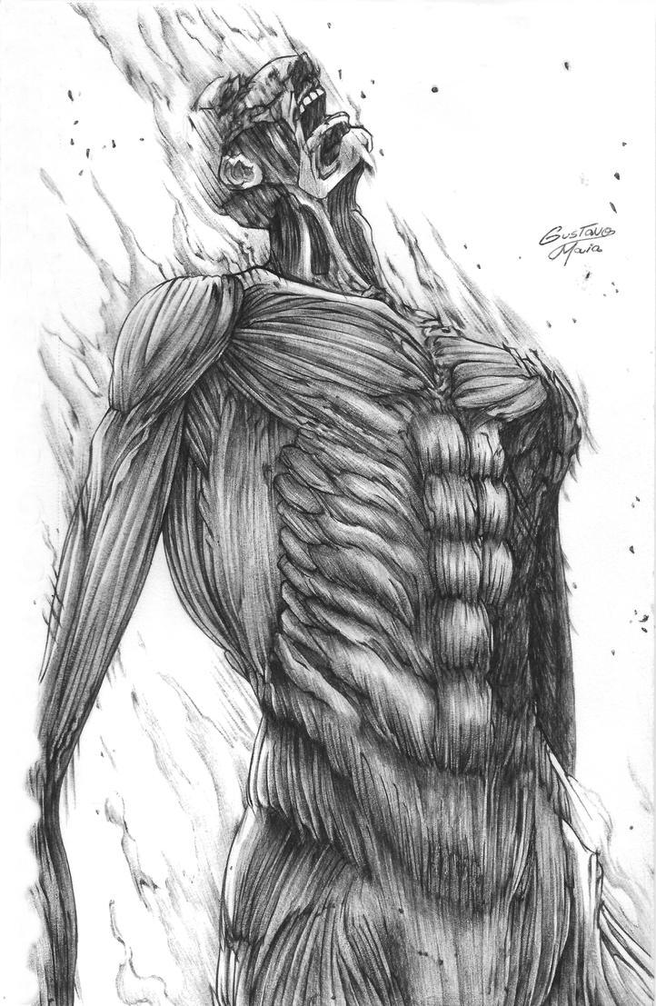 how to draw collosal titan manga