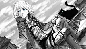 Armin SNK