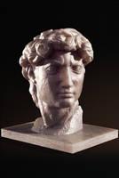 Michelangelo's David bust by alexanderstojanov
