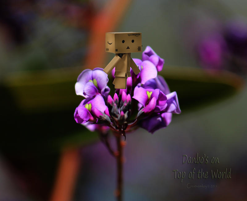 CVECE - Page 14 Danbo__s_on_top_of_the_world_by_creativemikey-d38r4c1