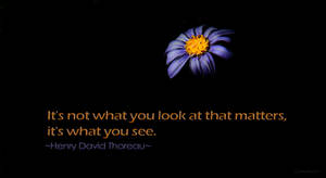 Sense of Sight by creativemikey