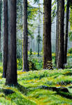 Swedish Forest- Watercolor