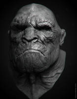 human-like ape by KenichiNishida