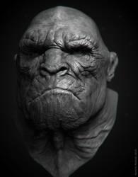 human-like ape