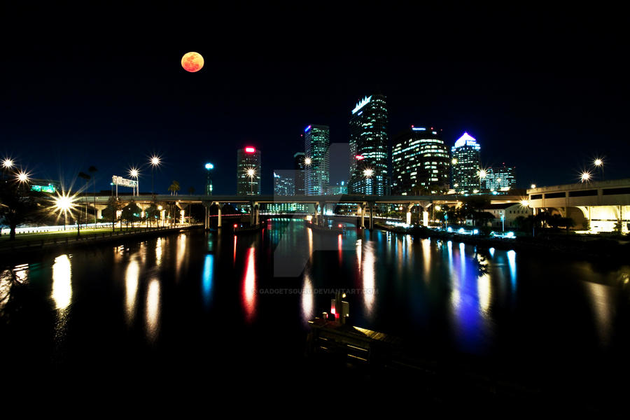 Tampa skyline by gadgetsguru