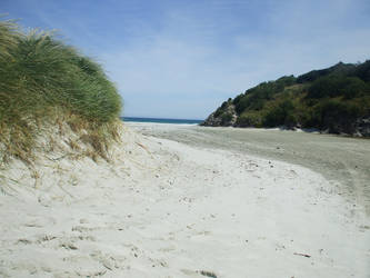 Beach by throw-elijah