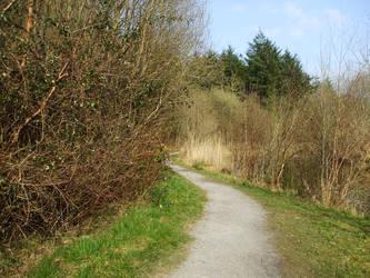 Path Stock by throw-elijah