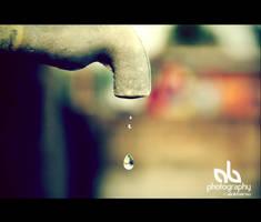 Dew by alokbarso