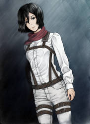 Mikasa Ackerman by malbrouk