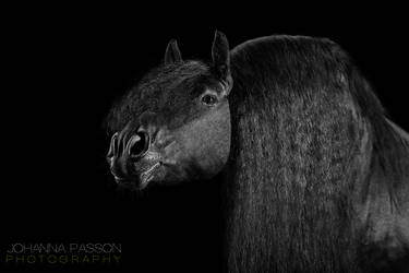 Rikko by PASSiON--PHOTO