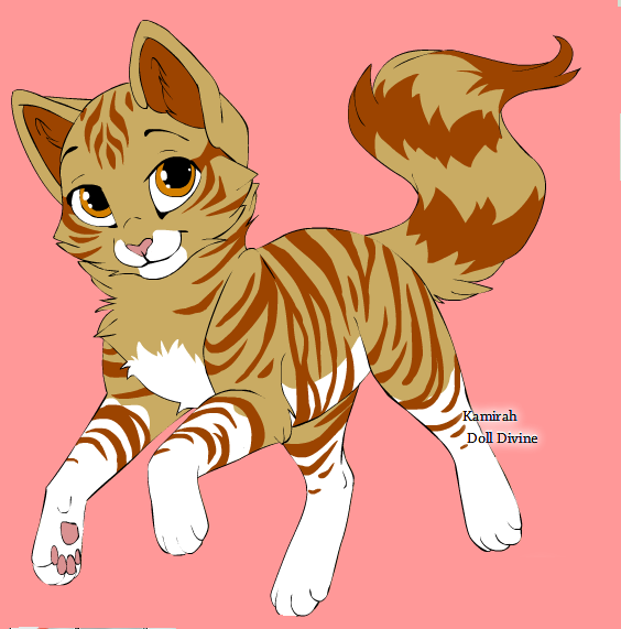 Warrior Cats Girl Orange Cats