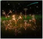 Floral Dimension 2