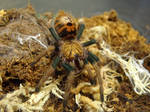 GBB Sling by stormymay888