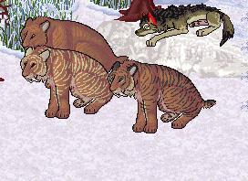 Smilodon Fatalis av sitting by RexT-Rex