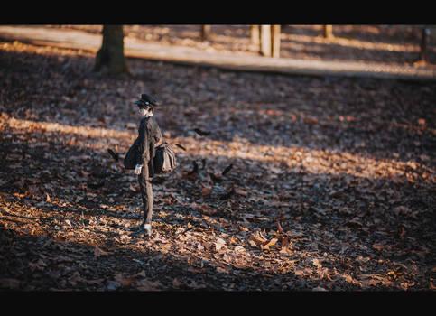 shadow - II