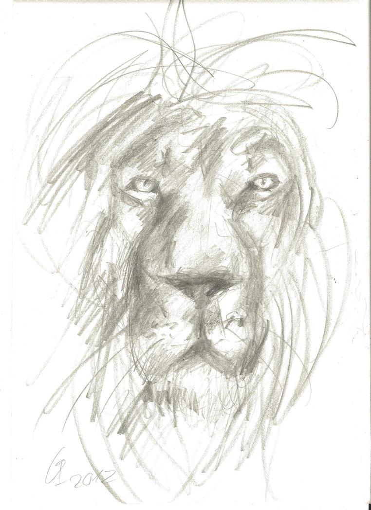 Lion sketch by IrissPen on DeviantArt
