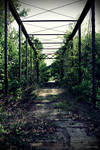 callaway fork bridge deck II by SMT-Images