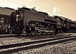 UP 844 Steam 4-8-4