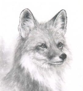 Aarmau-Senpai's Profile Picture