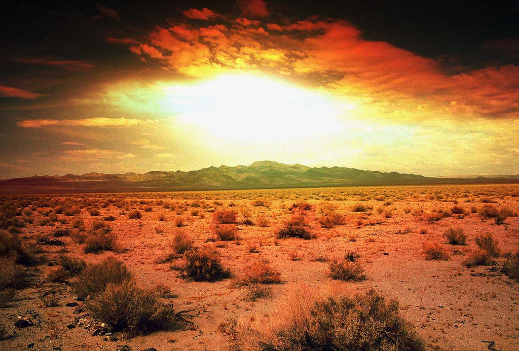 desert sun wallpapers - photo #21