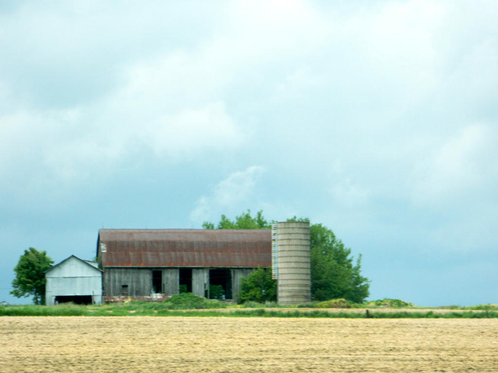 Down On The Farm by JayLPhotography