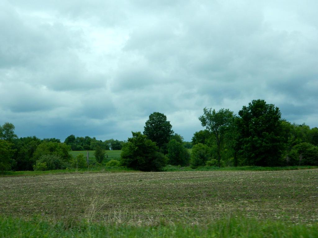 Field by JayLPhotography