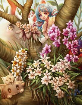 Orchidees - l imagination