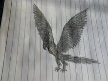 Black Phoenix by Bysthedragon