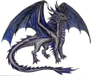 Onyxia the Black Dragoness