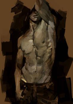 male.torso