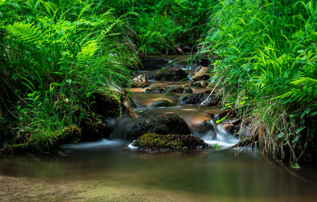 Mountain stream by andrejbujna on deviantart for Gartengestaltung teich