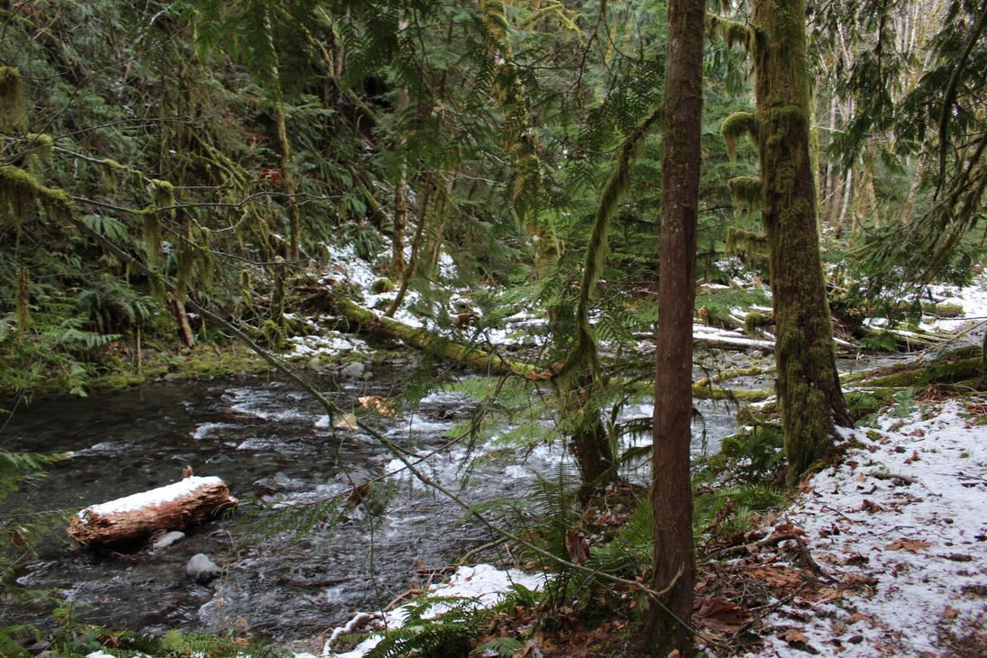winter forest creek stock by UnseenIvy