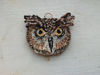 Mr.Owl by ShinaTris