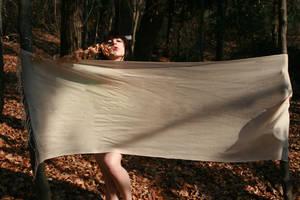 Geisha on the forest by priscilla-world