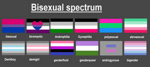 Bisexual Spectrum