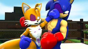 Commission: Tails VS Sonic (1 of 3)
