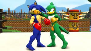 Commission: Jet vs Sonic 1