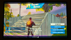 Two Hundred And Eighteenth Victory Royale