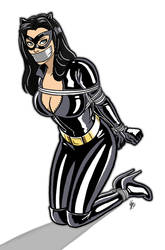 Catwoman Tape Gagged by kdrfc6787